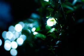 Lampki ogrodowe - drobne kuleczki 2,5cm
