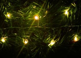 Zewnętrzne diody mini LED na srebrnym drucie dobrze komponują się w gałązkach choinki