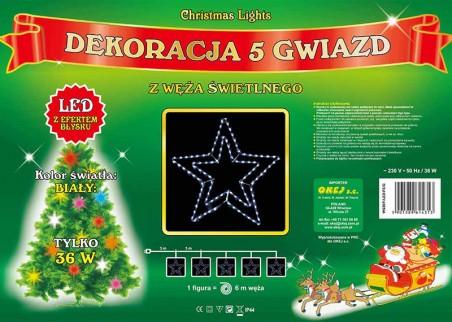 5 gwiazd z węża świetlnego z efektem błysku, świecą w kolorze zimnym białym. Bardzo efektowna, świąteczna dekoracja miast,