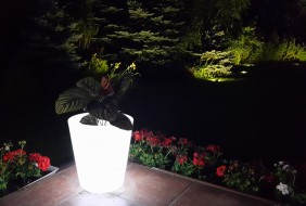 Lampa Ogrodowa Led Rgb Nt3840 Donica 5 Trybów Indukcyjna