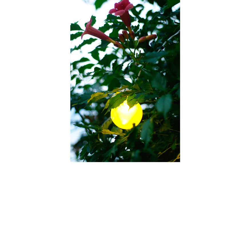 """Ogrodowe oświetlenie dekoracyjne - lampki """"PARTY LINE"""" i lampy LED RGB"""